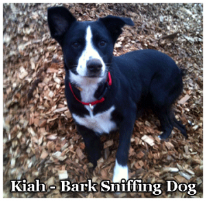 Kirtland Products family dog Kiah