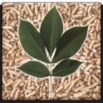 hickory-pellet-beveled