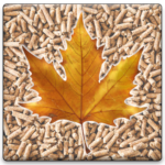 maple-pellet-beveled